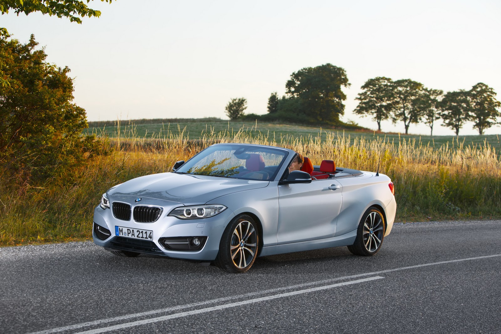 new bmw 2 series convertible photo gallery autocar india. Black Bedroom Furniture Sets. Home Design Ideas