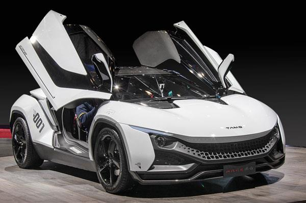 Tata Racemo: A closer look