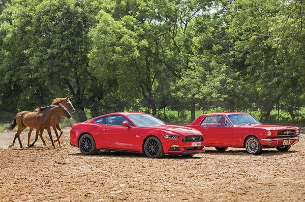 Going wild with the Mustangs, old and new
