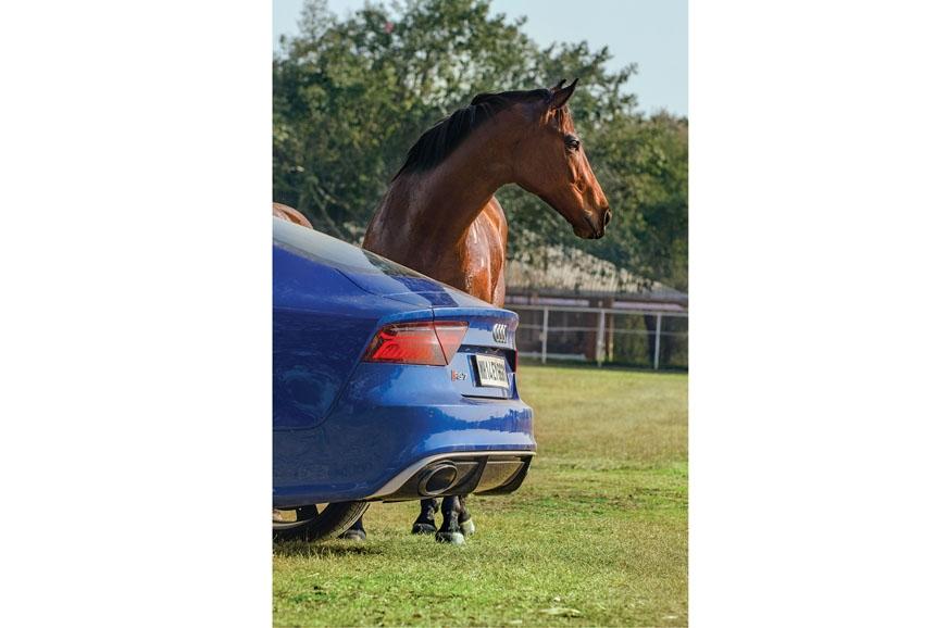 The horse in essence is rear-wheel drive.