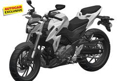 Suzuki Gixxer 250 India launch next year